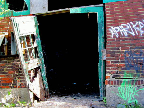 Photograph - Urban Decay Solvay 15 by Anita Burgermeister