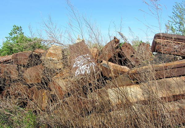 Photograph - Urban Decay Solvay Brick Ruins 1 by Anita Burgermeister