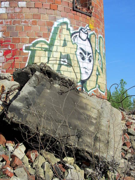 Photograph - Urban Decay Solvay Brick Ruins 4 by Anita Burgermeister