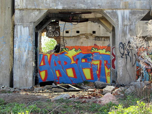 Photograph - Urban Decay Solvay Ruins 10 by Anita Burgermeister