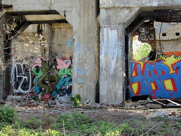 Photograph - Urban Decay Solvay Ruins 11 by Anita Burgermeister