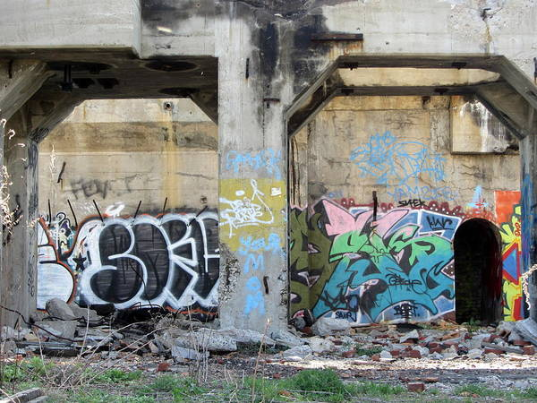 Photograph - Urban Decay Solvay Ruins 12 by Anita Burgermeister