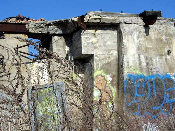 Photograph - Urban Decay Solvay Ruins 9 by Anita Burgermeister