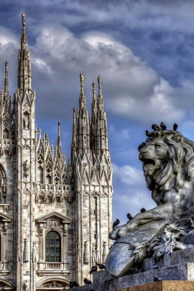 Italia Photograph - Urban Jungle Milan by Carol Japp