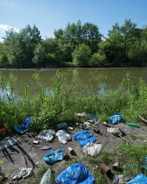 Litter Photograph - Urban Lake by Robert Brook