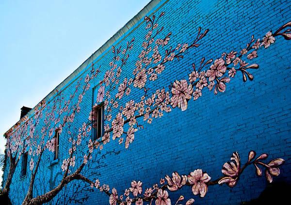 Wall Art - Photograph - Urban Landscape by Nickaleen Neff