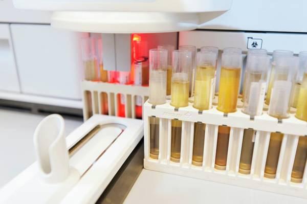Specimen Wall Art - Photograph - Urology Laboratory by Arno Massee