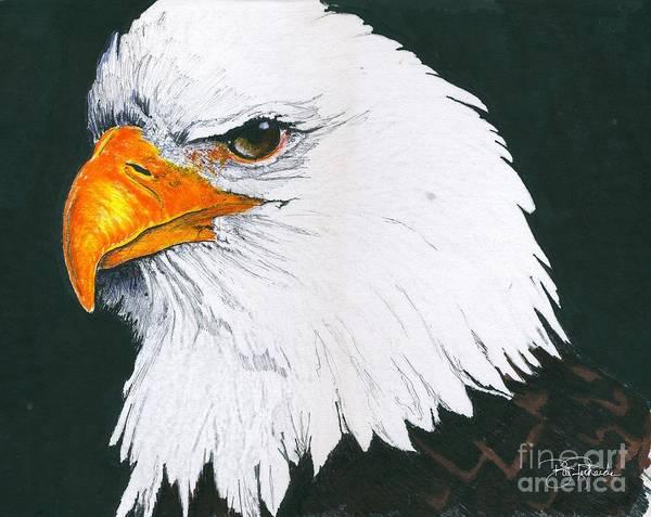 Us Bald Eagle Art Print