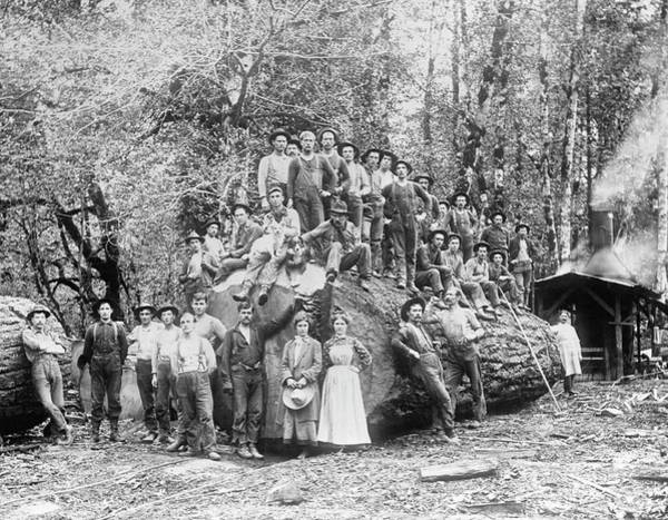 Settlers Photograph - Us Rural Settlement by Library Of Congress