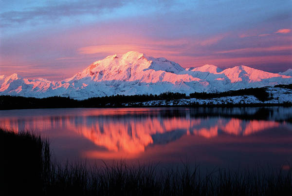 Mountain Range Photograph - Usa, Alaska, Denali National Park by Hugh Rose
