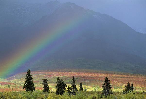 Alaskan Photograph - Usa, Alaska, Rainbow, Tundra, Fall by Gerry Reynolds