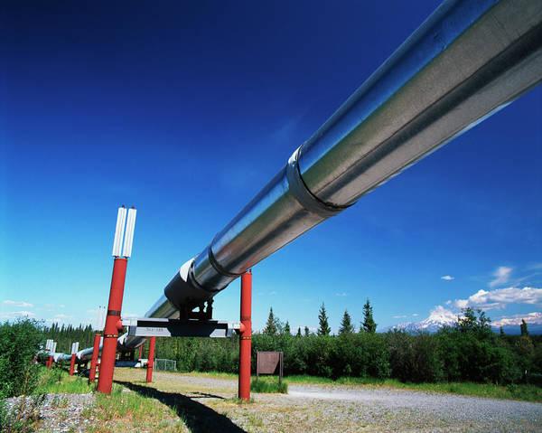 Mt. Adams Photograph - Usa, Alaska, Trans Alaska Crude Oil by Adam Jones