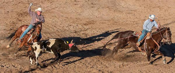 Chase Photograph - Usa, Arizona, Buckeye, Hellzapoppin by Jaynes Gallery