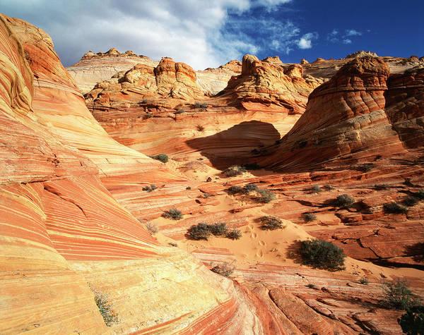Paria Canyon Photograph - Usa, Arizona, Paria Canyon, Sandstone by Adam Jones