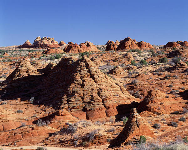 Paria Canyon Photograph - Usa, Arizona, Sandstone Formations by Adam Jones