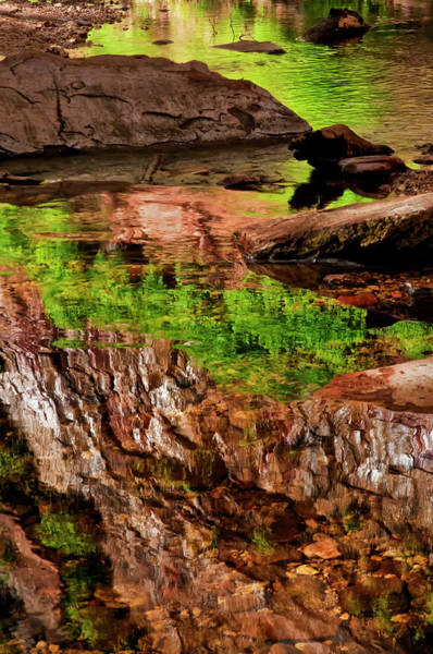 Green Jay Photograph - Usa, Arizona, Sedona, Verdee Valley by Jaynes Gallery