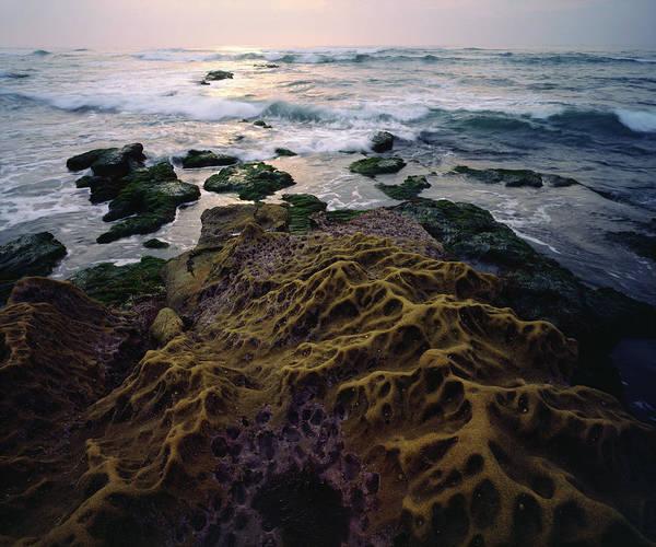 Wall Art - Photograph - Usa, California, San Diego, Sandstone by Jaynes Gallery