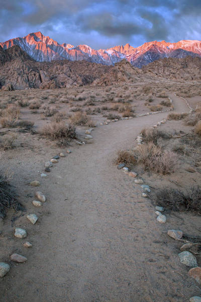 Alpenglow Photograph - Usa, California Sunrise On Lone Pine by Jaynes Gallery