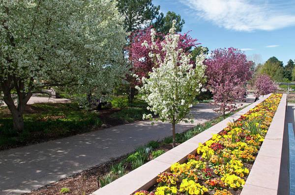 Co Photograph - Usa, Co, Denver Denver Botanic Gardens by Trish Drury