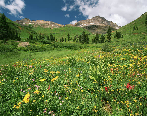 Mt. Adams Photograph - Usa, Colorado, Mt Sneffels Wilderness by Adam Jones