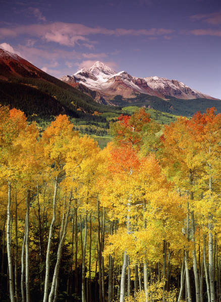 Stuart Photograph - Usa, Colorado, San Juan National by Stuart Westmorland