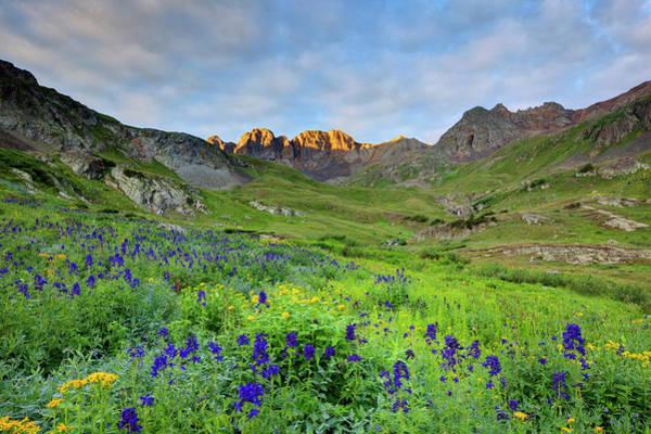 Basin Photograph - Usa, Colorado Sunrise On Wildflowers by Jaynes Gallery