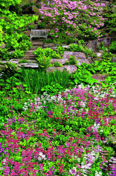 Delaware Photograph - Usa, Delaware, Wilmington, Quarry Garden by Jaynes Gallery
