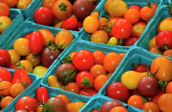 Forsyth Photograph - Usa, Georgia, Savannah, Cherry Tomatoes by Joanne Wells