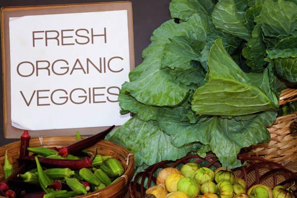 Forsyth Photograph - Usa, Georgia, Savannah, Fresh Organic by Joanne Wells
