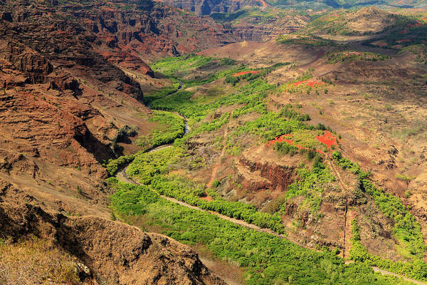 Waimea Canyon Photograph - Usa, Hawaii, Kauai, Waimea Canyon by Michele Falzone