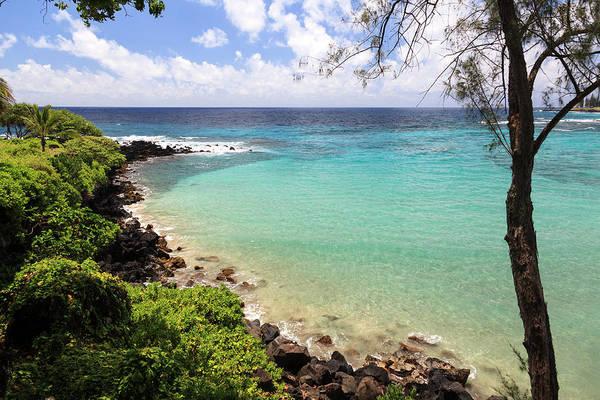 Maui Photograph - Usa, Hawaii, Maui, Road To Hana by Michele Falzone