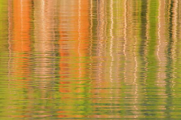 Redfish Lake Photograph - Usa, Idaho Reflections On Redfish Lake by Jaynes Gallery