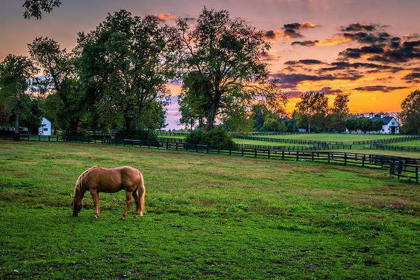 Horse Barn Photograph - Usa, Lexington, Kentucky by Rona Schwarz