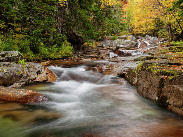 Wall Art - Photograph - Usa, New Hampshire, White Mountains by Ann Collins