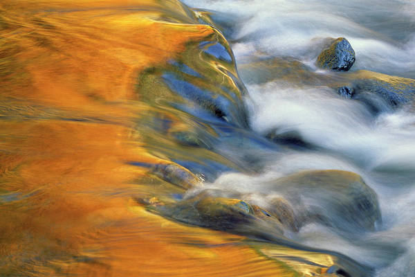 Whitewater Falls Photograph - Usa, Northeast, Fall Color Reflections by Jaynes Gallery
