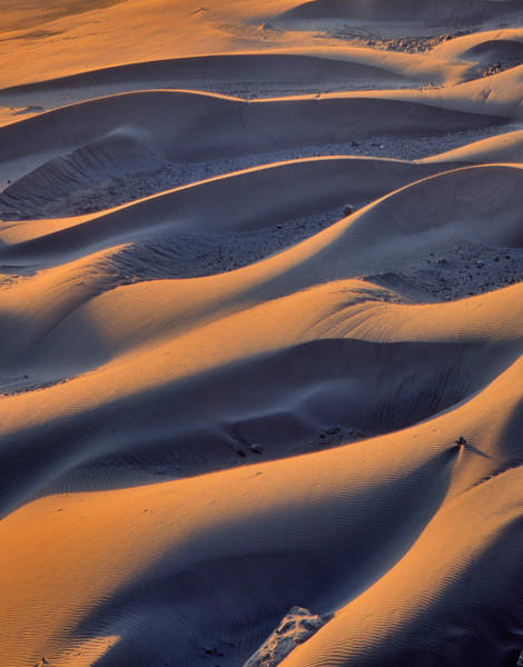 Oregon Dunes Photograph - Usa, Oregon, Cape Sebastian by Jaynes Gallery