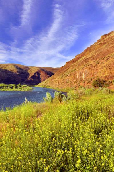 Basalt Photograph - Usa, Oregon Cliffs And Wild Mustard by Jaynes Gallery
