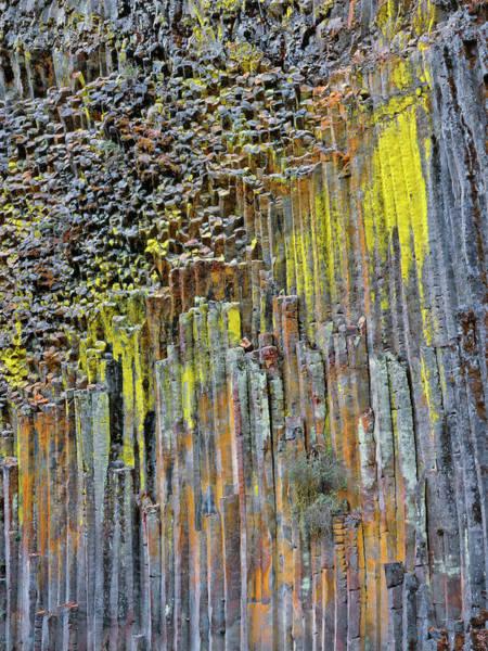 Orange Lichen Photograph - Usa, Oregon Columnar Basalt Covered by Jaynes Gallery
