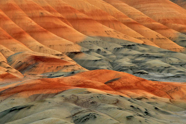 Crevice Photograph - Usa, Oregon, John Day Fossil Beds by Jaynes Gallery