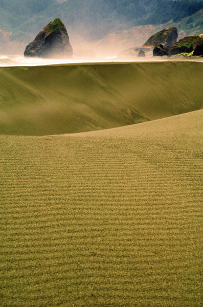 Oregon Dunes Photograph - Usa, Oregon Sand Dunes In Late Light by Jaynes Gallery
