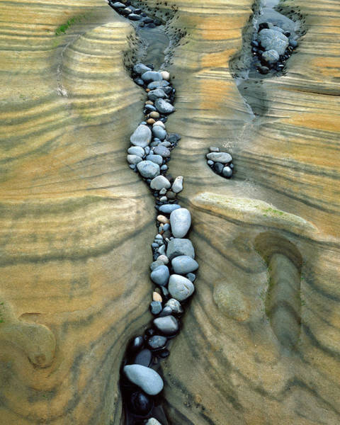 Water Erosion Photograph - Usa, Oregon, Seal Rock Beach by Jaynes Gallery