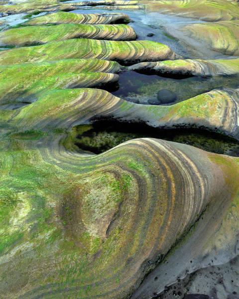 Wayside Photograph - Usa, Oregon, Seal Rock Beach Wayside by Jaynes Gallery