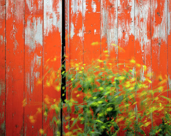 Breeze Photograph - Usa, Oregon, Wallowa County by Jaynes Gallery