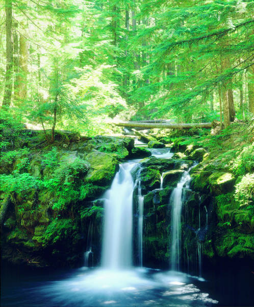 Oregon Ridge Photograph - Usa, Oregon, Whitehorse Waterfall by Jaynes Gallery