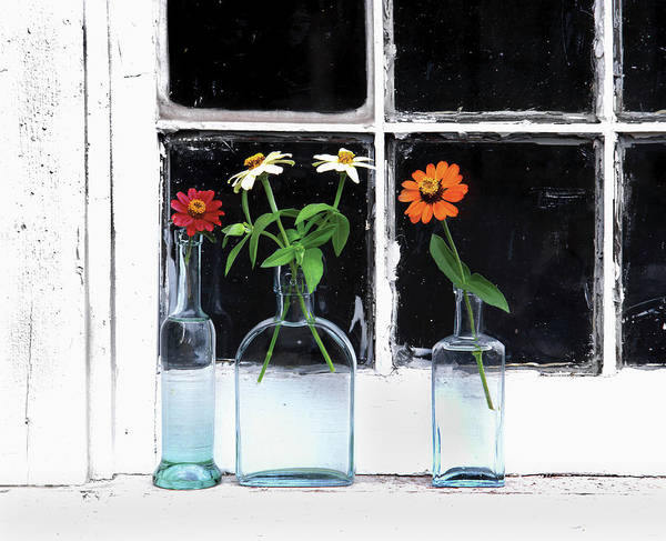 Annual Photograph - Usa, Oregon, Zinnias In Bottles by Jaynes Gallery