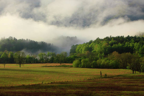 Cades Cove Photograph - Usa, Tennessee, Foggy Morning At Cades by Joanne Wells