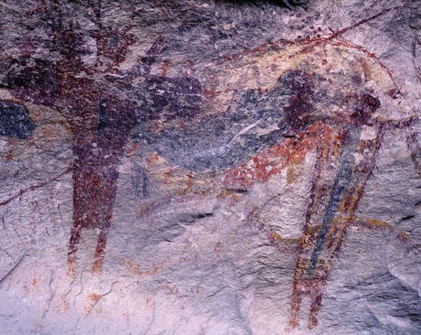 Pictograph Photograph - Usa, Texas, Seminole Canyon State by Jaynes Gallery