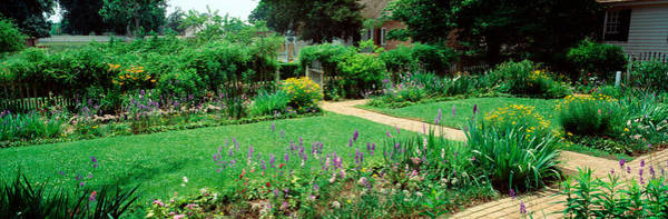Colonial Williamsburg Photograph - Usa, Virginia, Williamsburg, Colonial by Panoramic Images