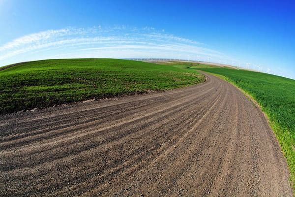 Back Road Photograph - Usa, Washington, Spring In Palouse by Terry Eggers