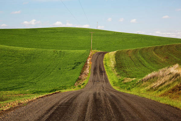 Away From It All Wall Art - Photograph - Usa, Washington State, Palouse, Back by Terry Eggers